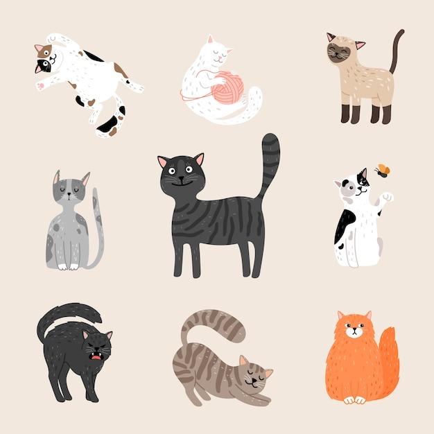 Пушистые забавные кошки. Premium векторы