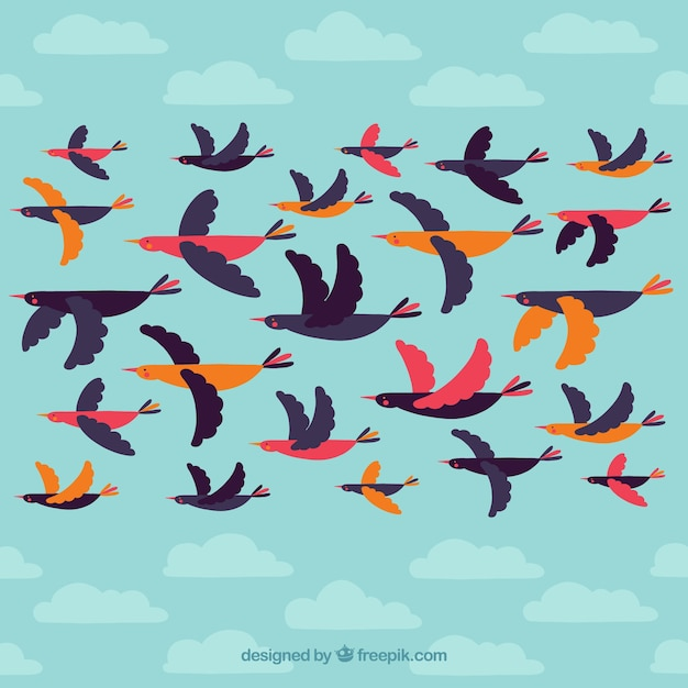 Flying bird collection