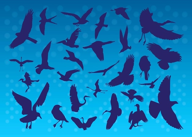 Flying Birds Silhouettes Free Vector