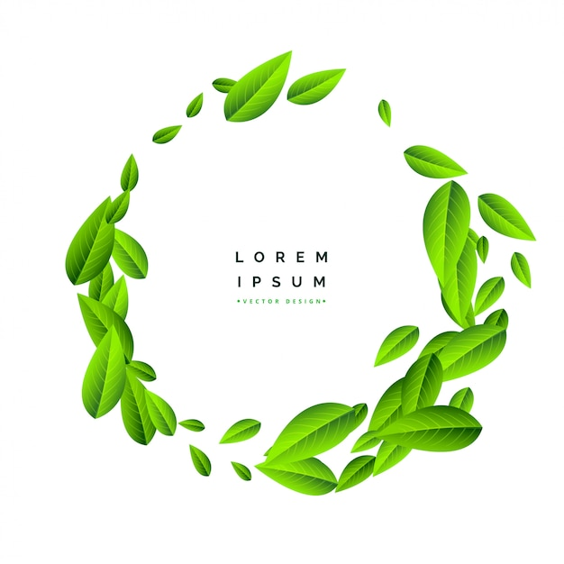 Flying green leaves on white background Free Vector