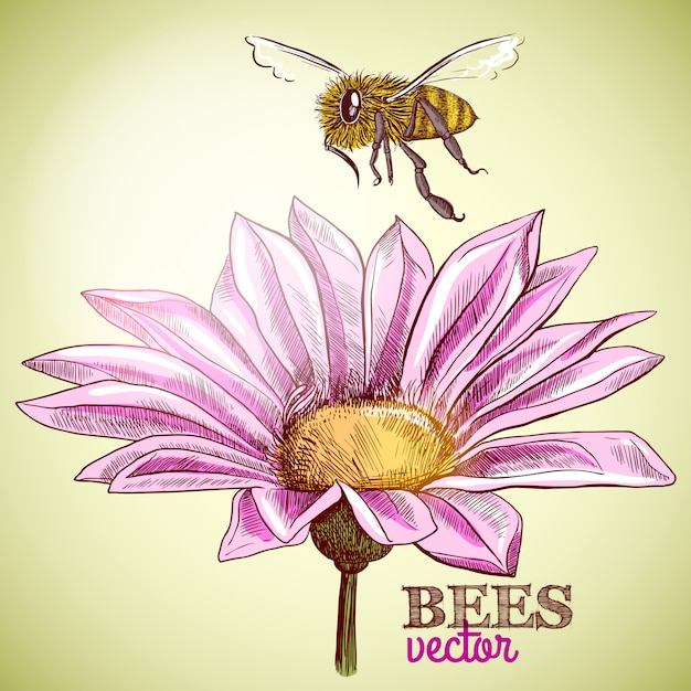 Flying honey bee and blossoming flower background Free Vector