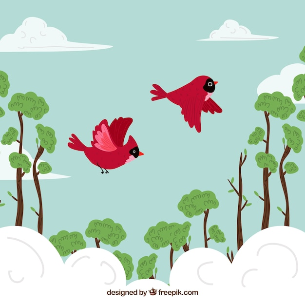 Flying Red Birds Background Stock Images Page Everypixel