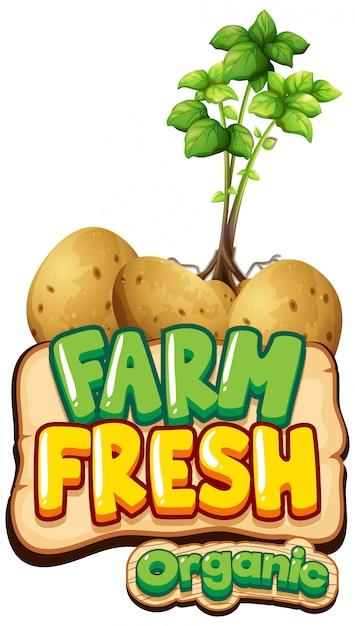Progettazione di font per la parola fattoria fresca con piante di patate Vettore gratuito
