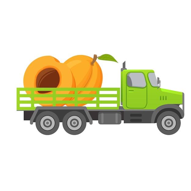 Доставка еды грузовиком, сбор абрикосовых фруктов, машина. Premium векторы