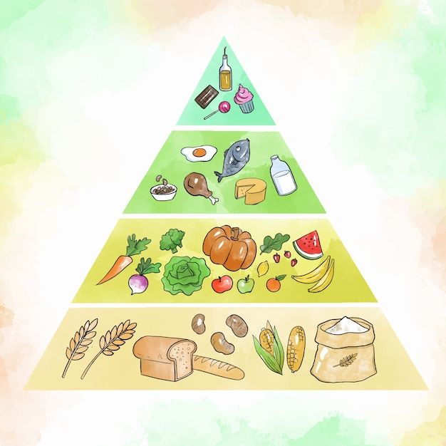 Пищевая пирамида для питания Бесплатные векторы