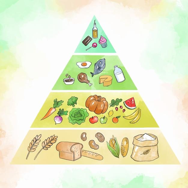 Food pyramid for nutrition Premium Vector