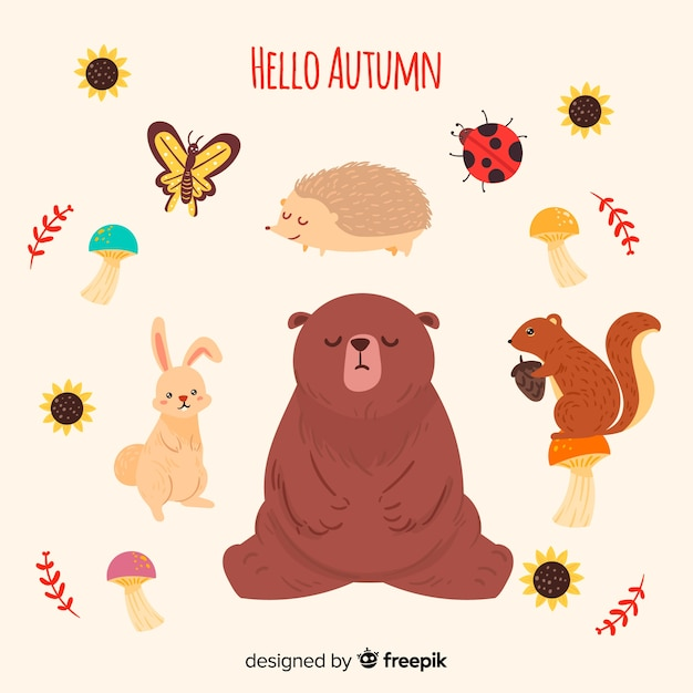 Forest animal collection hand drawn style Free Vector