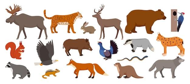 イラストの白いセットで隔離の森の動物 Premiumベクター
