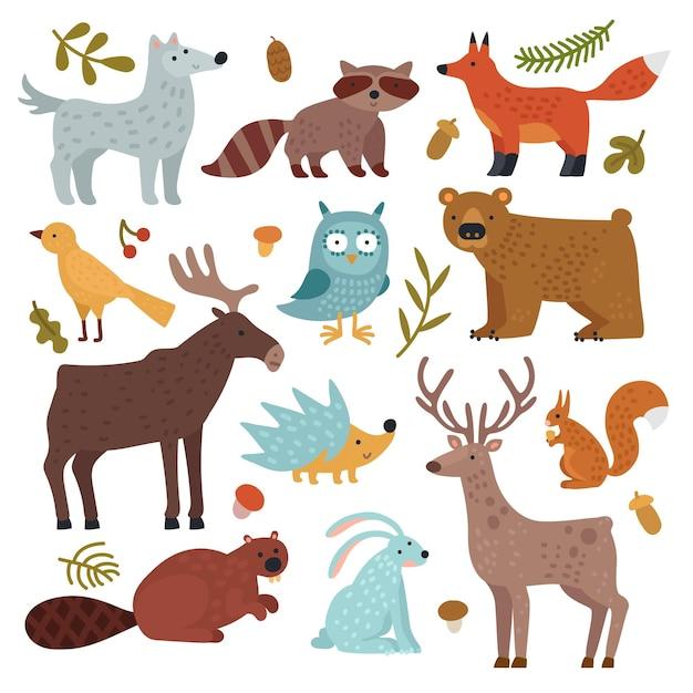 森の動物。オオカミ、アライグマとキツネ、クマとフクロウ、鹿、リスとハリネズミ、ノウサギとビーバー、ワピチ。 Premiumベクター