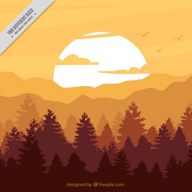 Forest background at sunset in brown\ tones