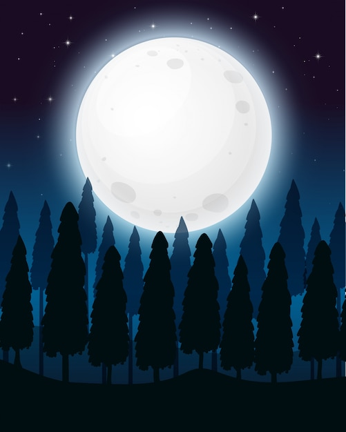 A forest at the full moon night Free Vector