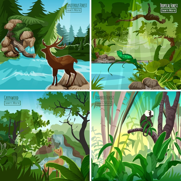 Forest landscape 4 flat icon square Free Vector