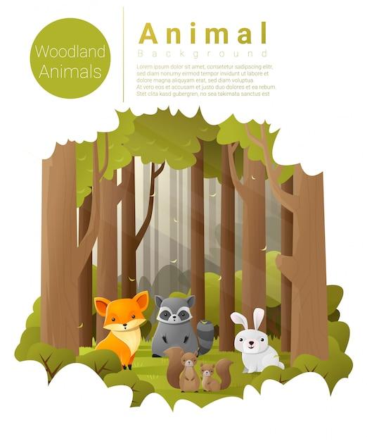Forest landscape background with woodland animals Premium Vector