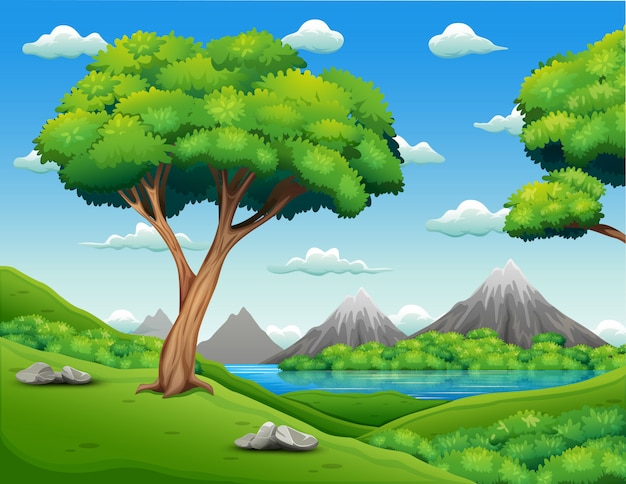 Forest landscape with beautiful nature background Premium Vector