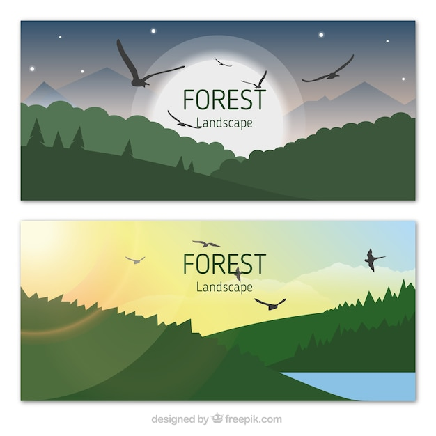 Forest landscape with eagles banners