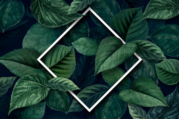 Forest leaf frame Free Vector