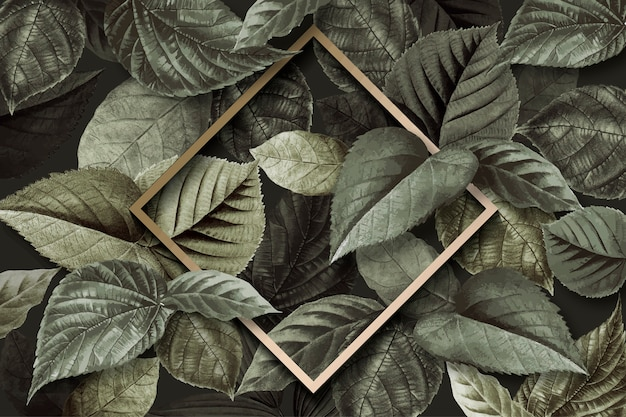 Forest leaf frame Free Vector