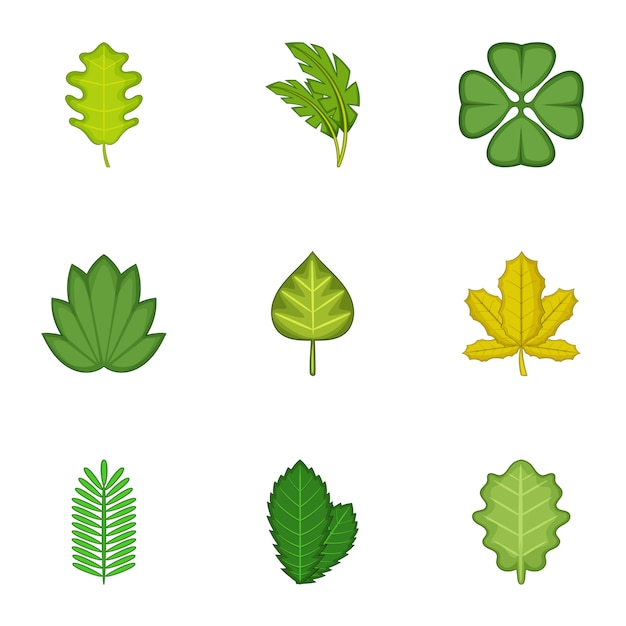 Forest leaves set, cartoon style Premium Vector