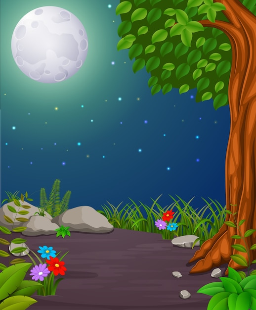 Forest at night and wood with fullmoon Premium Vector