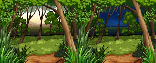 Forest scene at daytime and nighttime Free Vector