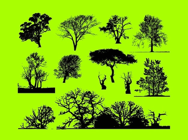 forest trees free vector