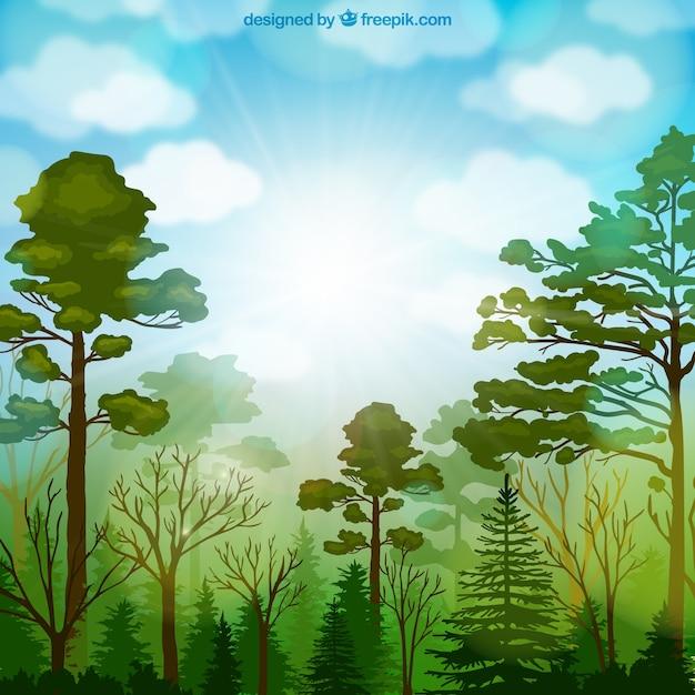 Forest vegetation Free Vector