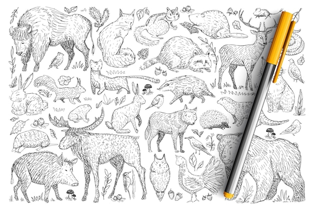 Forest wild animals doodle set. collection of hand drawn deer fox bear rabbit squirrel raccoon buffalo hedgehog living in wild nature isolated. Premium Vector