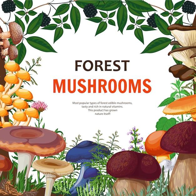 Forest wild mushroom background Free Vector