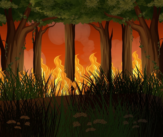 A forest with wildfire disaster Premium Vector
