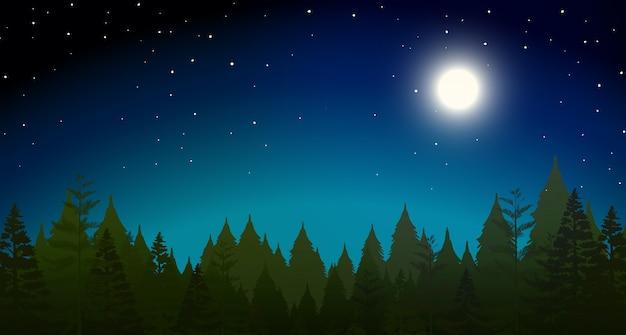Forrest at night scene Premium Vector