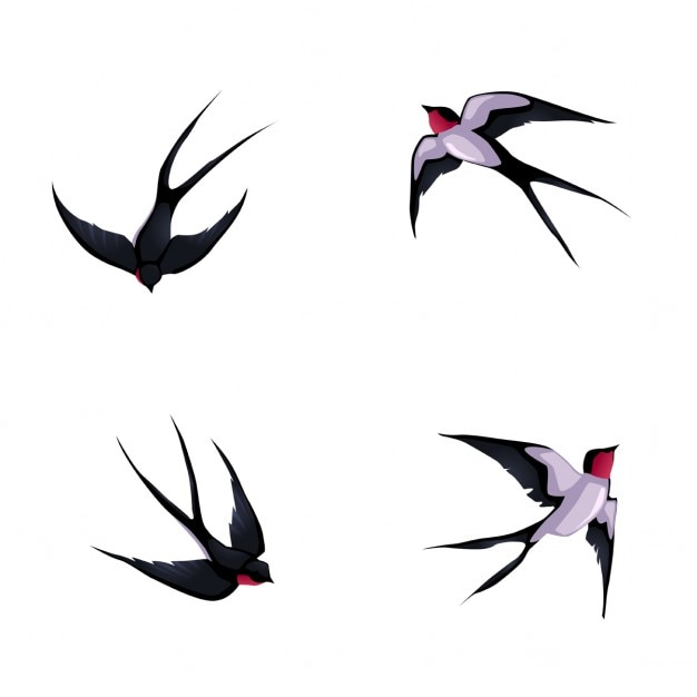 Four birds Free Vector
