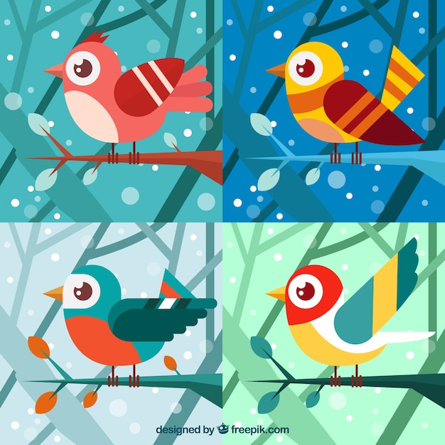 Four colorful winter birds in flat\ design
