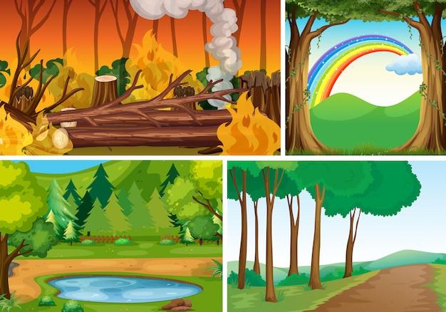 Четыре различных стихийных бедствия сцена лесного мультяшном стиле Бесплатные векторы
