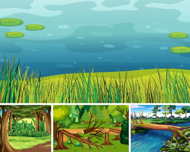 Four different nature scene of forest and swamp cartoon style Free Vector