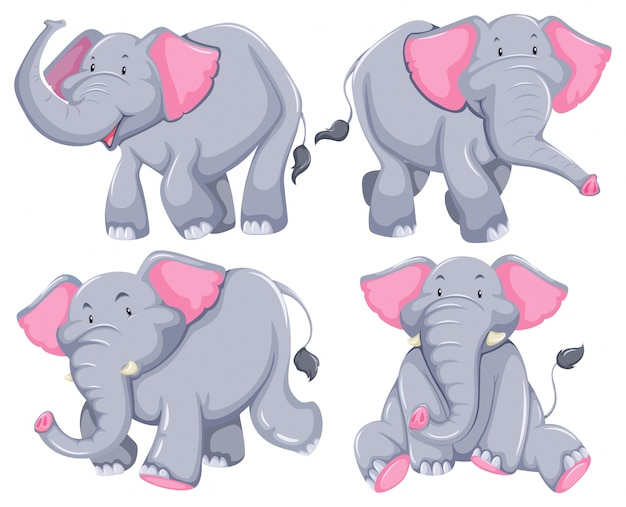 Four elephants in diferent poses Free Vector