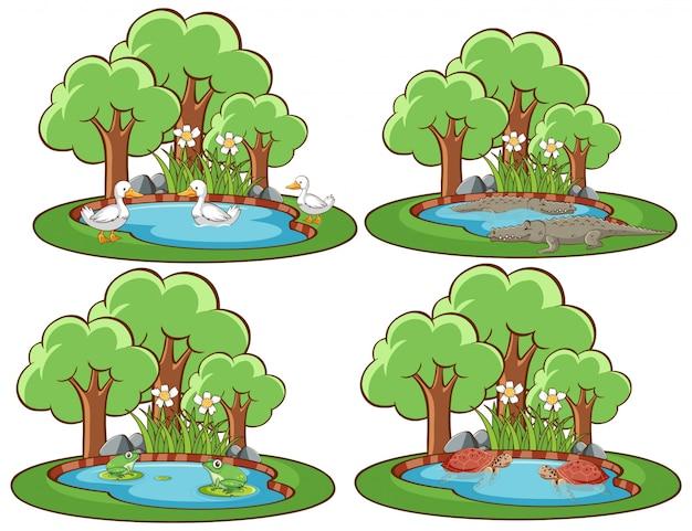 Quattro scene di foresta con molti animali Vettore gratuito