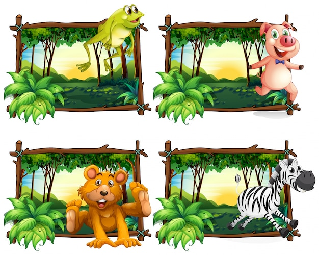 Four frames of wild animals in the jungle\ illustration