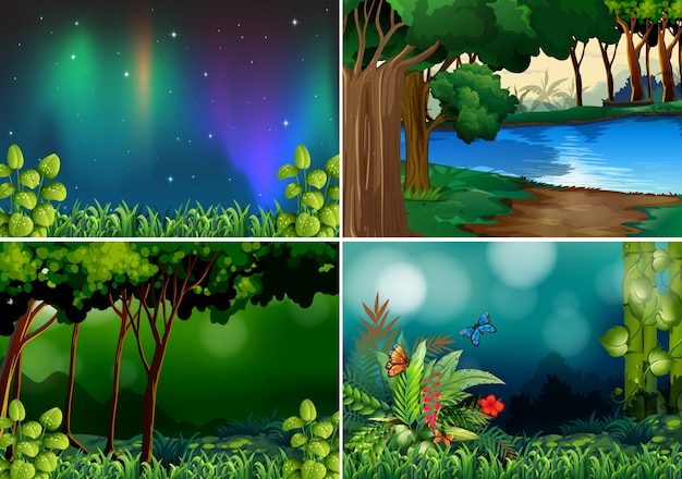 Four scenes of forest at night time