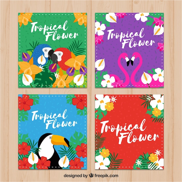 Four tropical cards with exotic birds