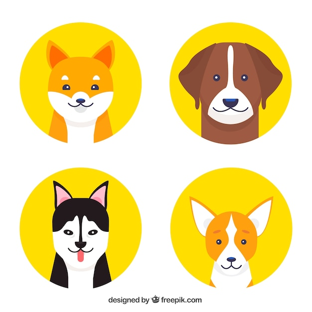 Four yellow circles with dogs of different\ breeds