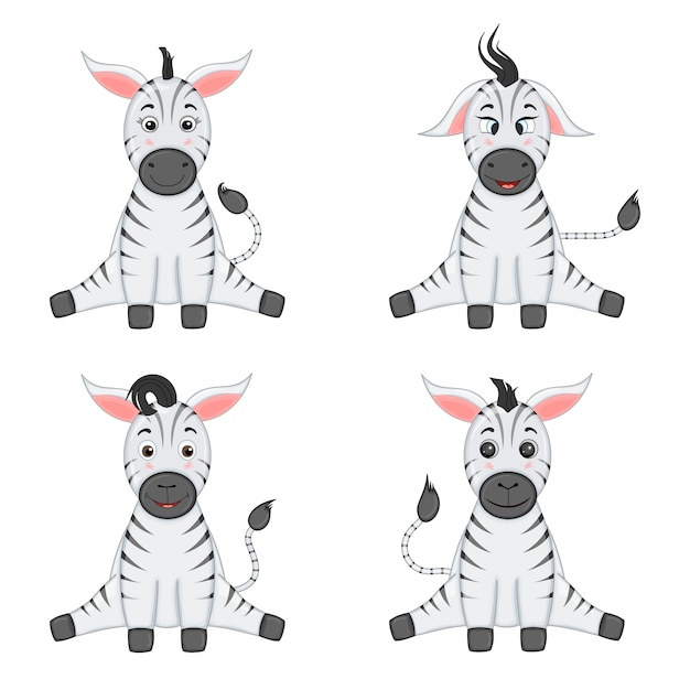 Four zebras sit with their legs apart and smile Premium Vector