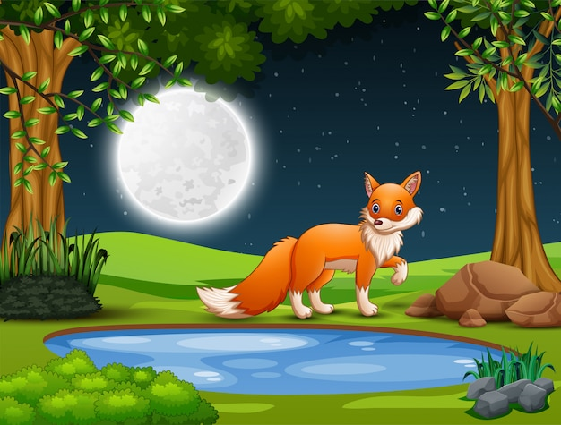 A fox looking for prey at night Premium Vector