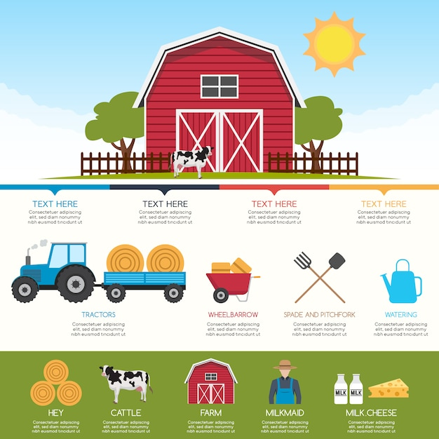 Fram infographic design Free Vector