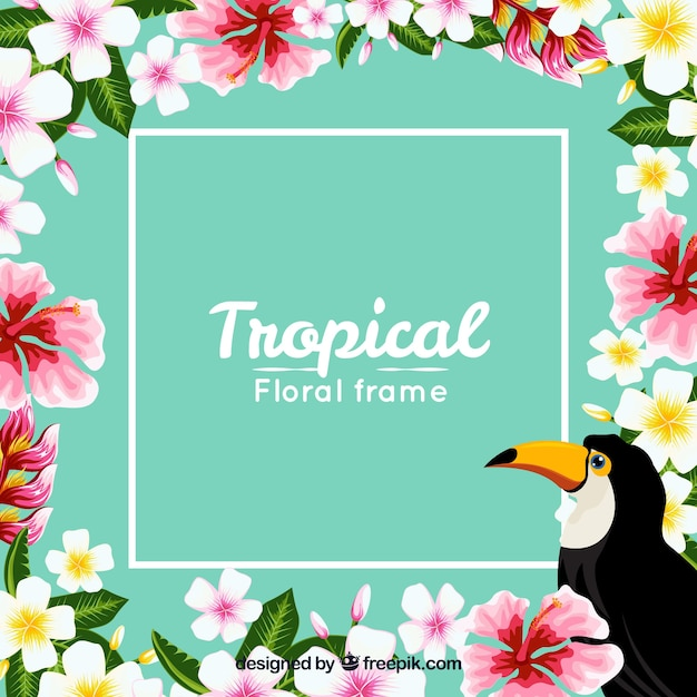 Frame Background And Tropical Flowers With Toucan Stock Images