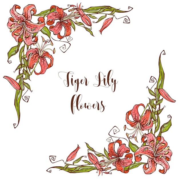 premium vector frame decor with lily flowers decorative corner https www freepik com profile preagreement getstarted 4745437