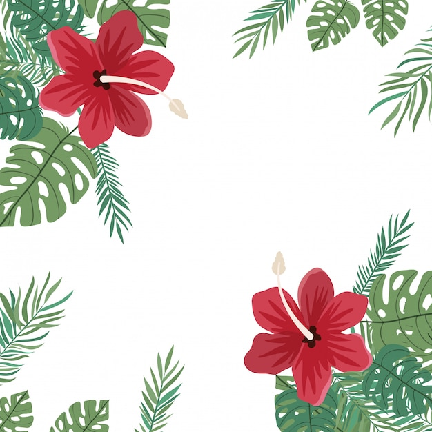 Frame of flower and leaves Free Vector