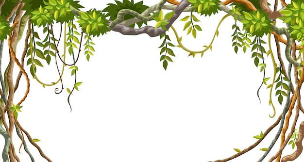 Frame of liana branches and tropical leaves. Free Vector