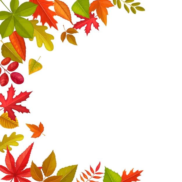 落ち葉のフレーム、カエデ、オーク、栗の紅葉、ニレのナナカマド。白い背景の上の秋の季節の木の葉と漫画の境界線。 Premiumベクター