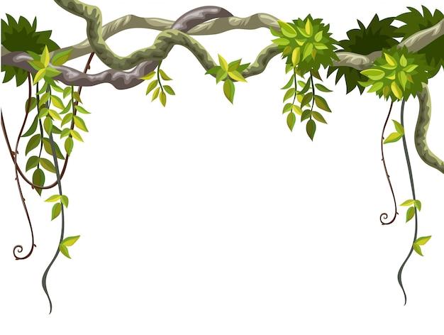 リアナの枝と熱帯の葉のフレーム。 無料ベクター