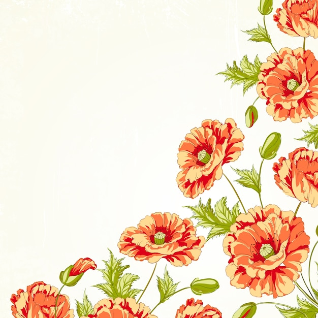Frame of poppies Free Vector